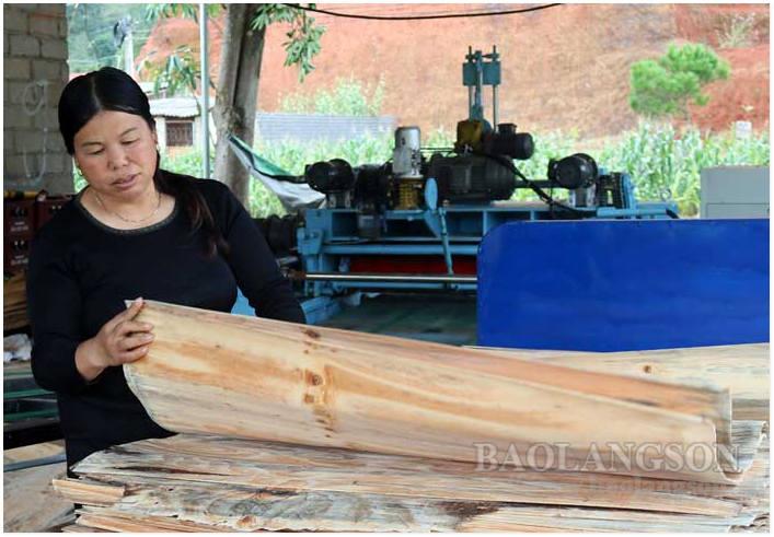 20. Tan Thanh.jpg